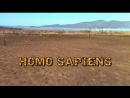 Человек разумный / Homo Sapiens (2004)