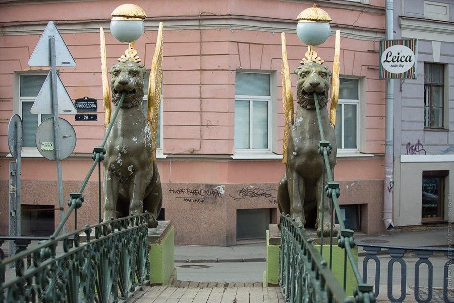 Грифоны на Банковском мосту Санкт-Петербург