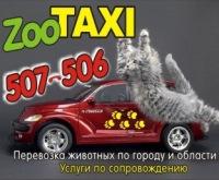 Зоотакси Калининград, 1 марта , Калининград, id177203315