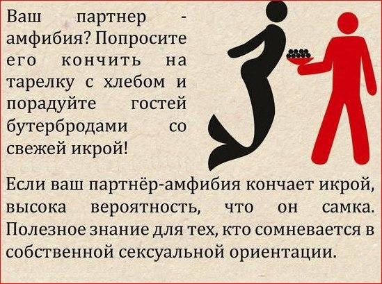 http://cs14115.vk.me/c614631/v614631522/71a6/LAgjxBLcHS0.jpg