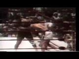 Левый хук Джо Фрейзера  признан самым мощнейшим в истории бокса - HD