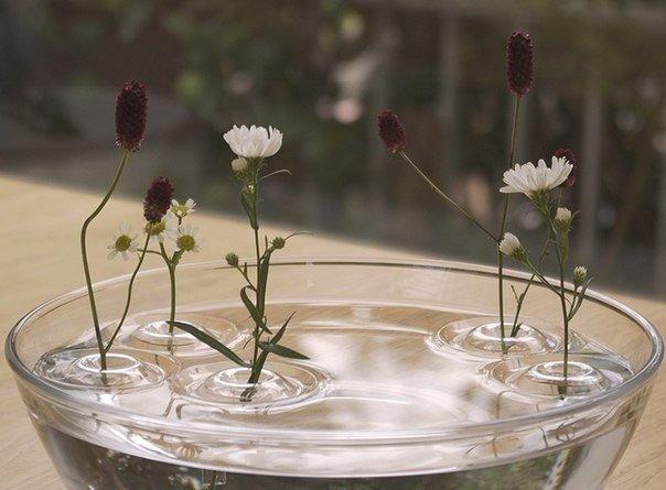 Иллюзия зависающего цветка