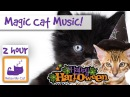 Magic Cat Music Watch Your Cat Fall Asleep Before Your Eyes with Our Specially Designed Cat Music