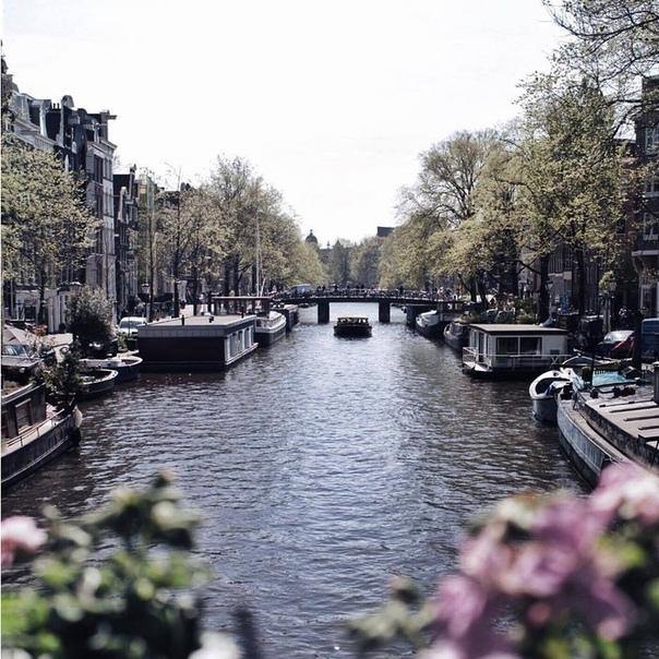 Петербург: прямые рейсы в Амстердам всего за 5700 рублей туда-обратно из Хельсинки