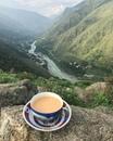 Иногда все, что мне нужно, — это чашечка чая и чтобы никто не трогал