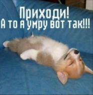 Очень скучаю и хочу увидеть Юлечку)))))