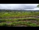 Бали Амед местность2