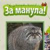 Манул - официальное сообщество ZaManula.Ru