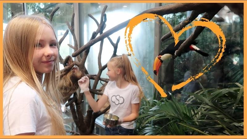FEEDING ANIMALS AT UNIVERSEUM izaandelle