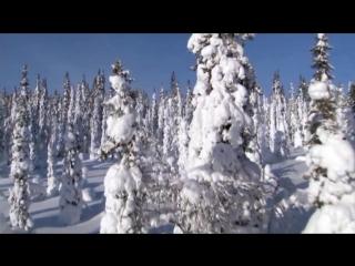 Bobina Winter Original Mix