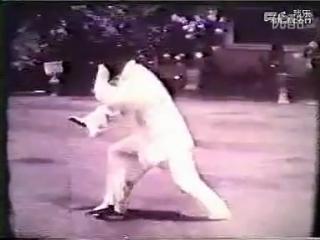 鬼魅神手  董虎岭先生传统杨氏太极拳85式(清晰版) 标清 таолу85( 108) Янши Тайцзицюань.