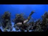 IMAX - Ocean Men - Hombres del Oc