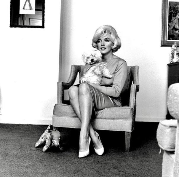 Фотосессия Мэрилин Монро с собачкой. Фотограф: Eric Sipsey 1961 год