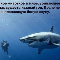 Грета Иванова, 10 мая , Хабаровск, id15067508