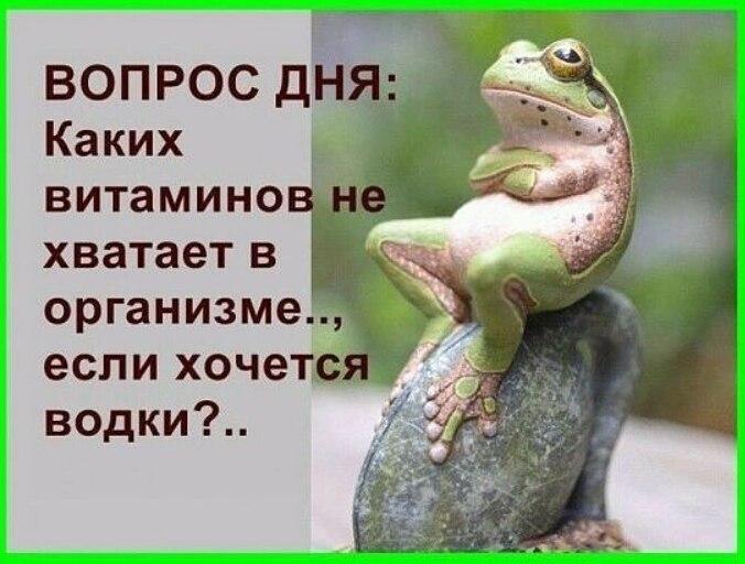 https://pp.userapi.com/c543108/v543108660/2ba99/qvFJiU2dqPI.jpg