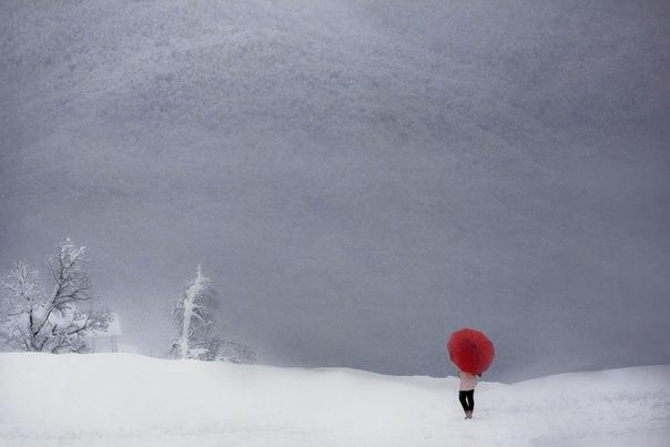 «Серое покрывало». Красная поляна, Краснодарский край. Автор фото — Дмитрий Купрацевич