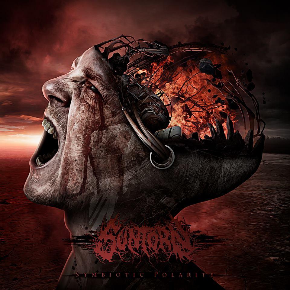 Suntorn - Symbiotic Polarity (2015)