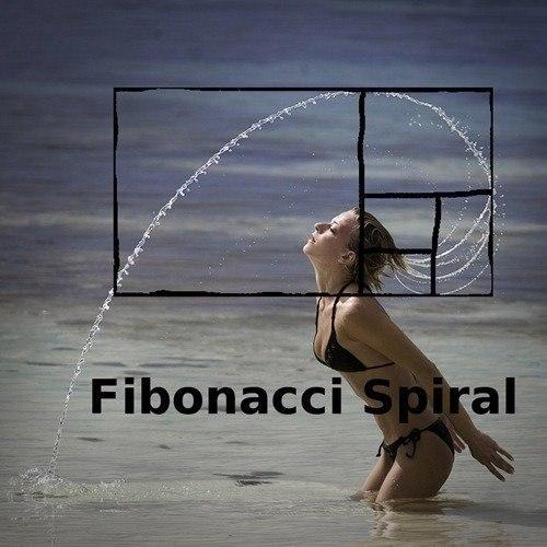 Фибоначчи в форексе что это такое