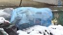 ТРК Экспресс : Пензенские общественники выявляют проблемы «мусорной реформы»