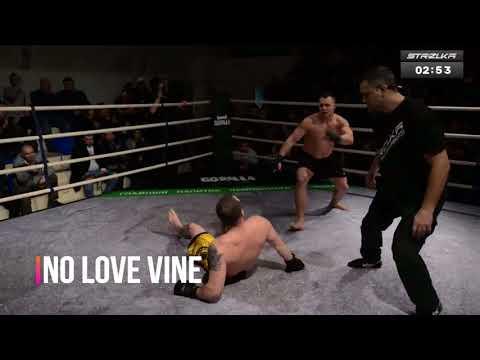 No Love Vine 118
