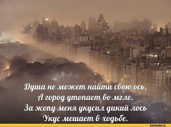 https://pp.vk.me/c409127/v409127935/22c9/fPPw8e2kdD0.jpg