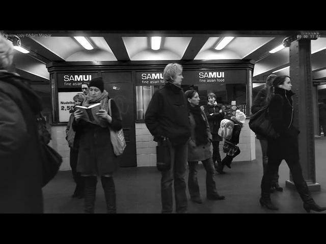 Adam Magyar - Stainless, Alexanderplatz (excerpt), 2011