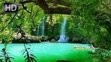 Relaxation music and nature sounds birds singing, sound of waterfall and sound of river