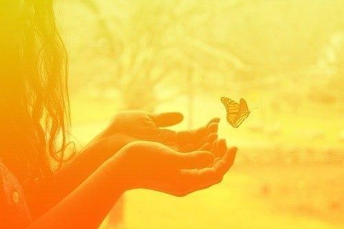 Метелик в руках, життя продовжується!