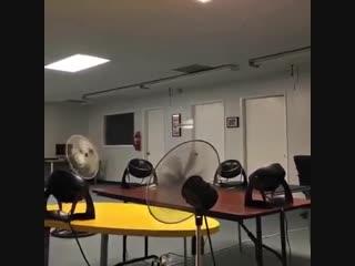 Когда физикам скучно
