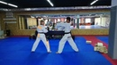 Arina Fox - master of Taekwondo and mixed wrestling, breaks the boards with his hands