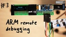 Remote Debugging ARM Chip with SWD JTAG Hardware Wallet Research 3
