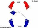 Judo O Goshi footwork