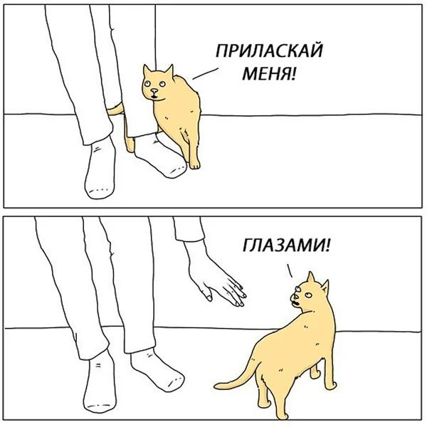 Фото №456300557 со страницы Tatiana Popova
