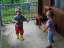 ДЕТИ жгут кари и тима