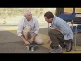 Жан-Клод Ван Дамм Звезды в Volvo Trucks последний фильм - The Epic Split