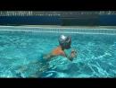 Новый стиль плавания гусеничка