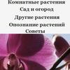 Сообщество любителей комнатных и садовых цветов