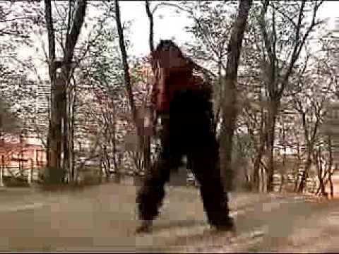 子龙八极拳教程 Zi Long Baji Quan