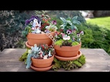 Alice in Wonderland Fairy Garden Garden Answer