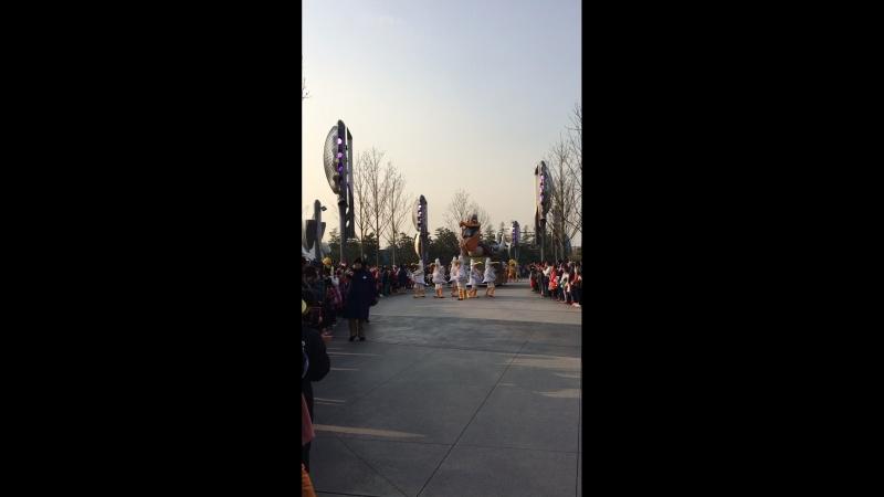 Шанхай Диснейленд 26 января 2018 год