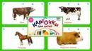 Карточки для детей - Домашние животные 20 карточек Карточки Домана