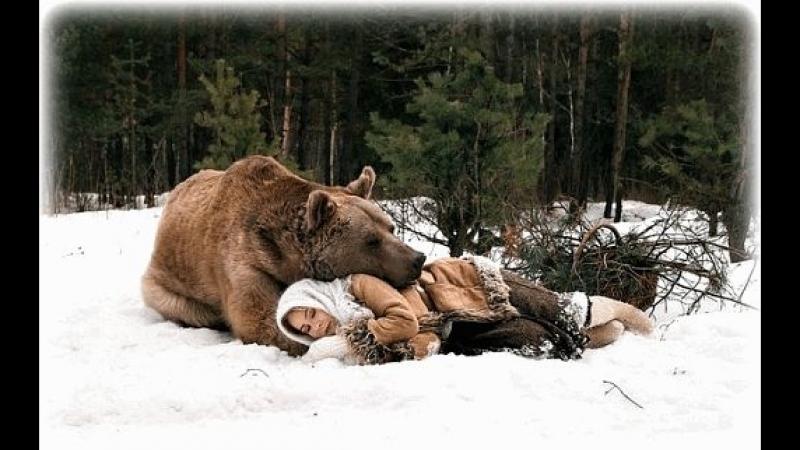 Где Твой Медведь
