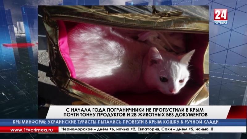 С начала года крымские пограничники не пропустили с Украины почти тонну контрабандных продуктов и 28 животных без документов