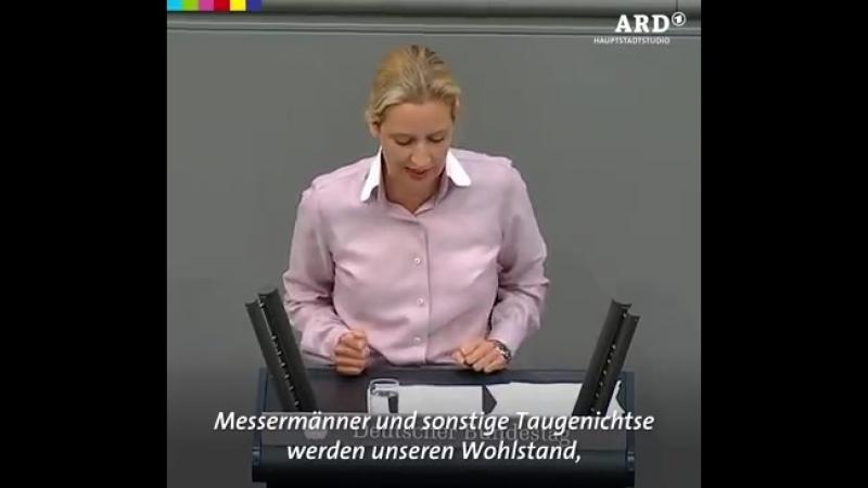 Das geht ja schon gut los Bericht aus Berlin