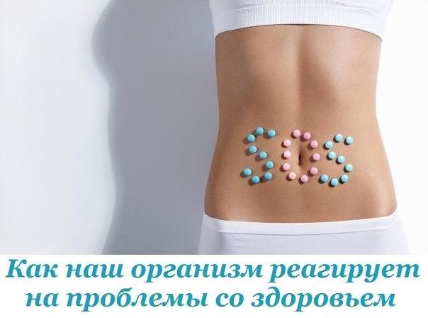 http://cs7063.vk.me/c7008/v7008391/38e72/n-WvYOVnTIU.jpg