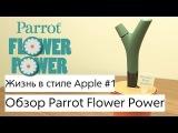 Жизнь в стиле Apple #1 - Parrot Flower Power