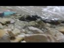 Плитвицкие озера 7 Подводный мир