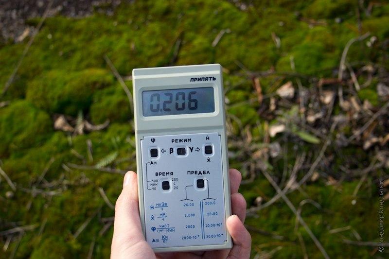 Радиоактивный мох Припять