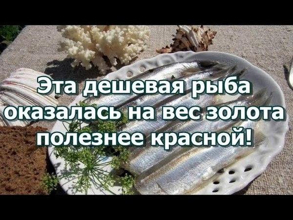 Эта дешевая рыба оказалась на вес золота - полезнее красной!
