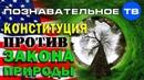 Государство против закона природы (Познавательное ТВ, Айрат Димиев)